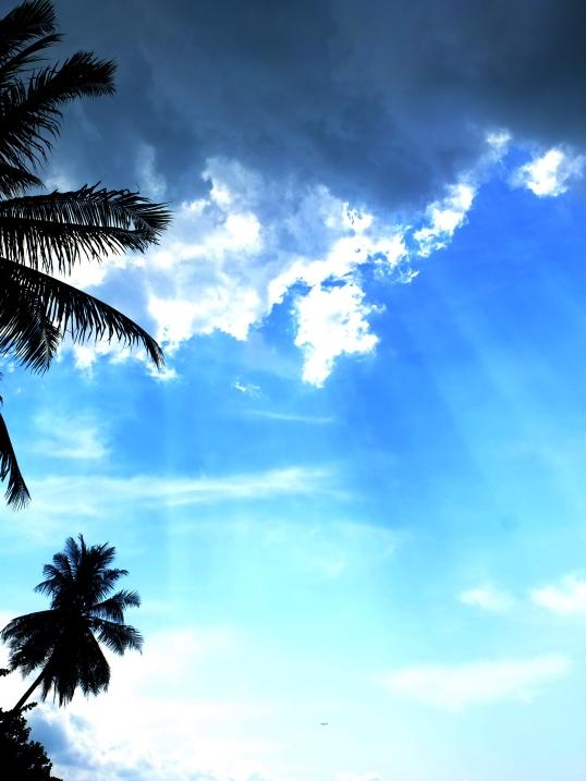 Paint My Sky